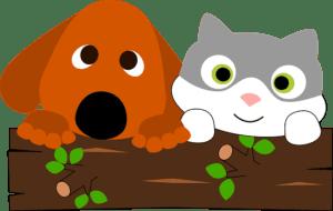 Pets love Bioflow
